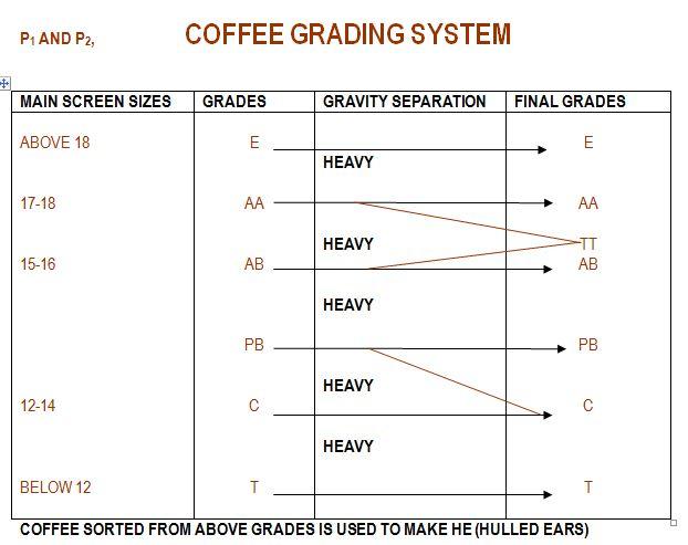 Kenya Grading System