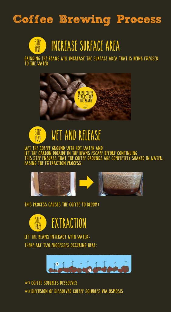 Summary of the Coffee Brewing Process