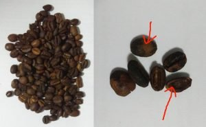 indoEstateCoffee beans